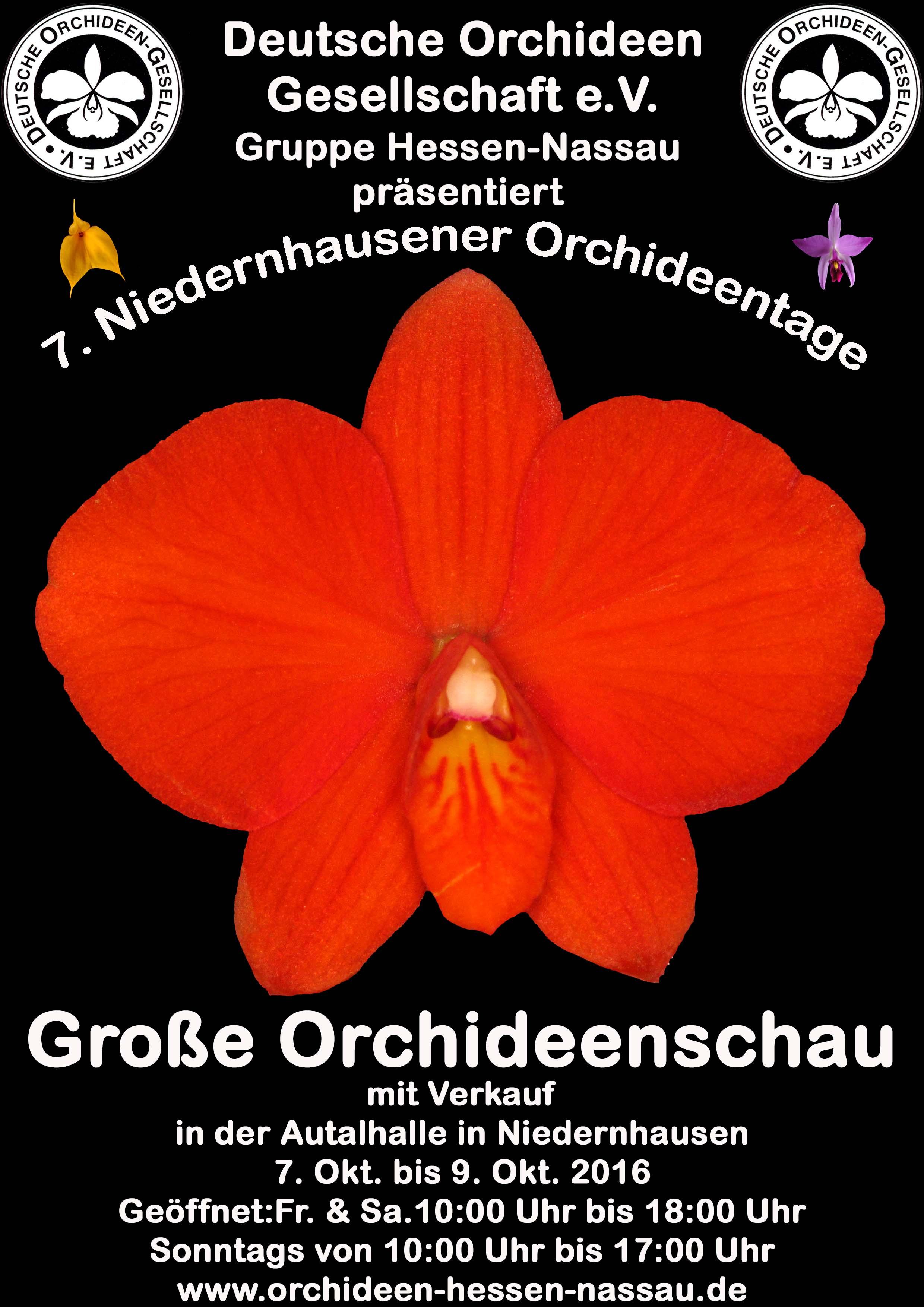 7. Niedernhauserner Orchideentage